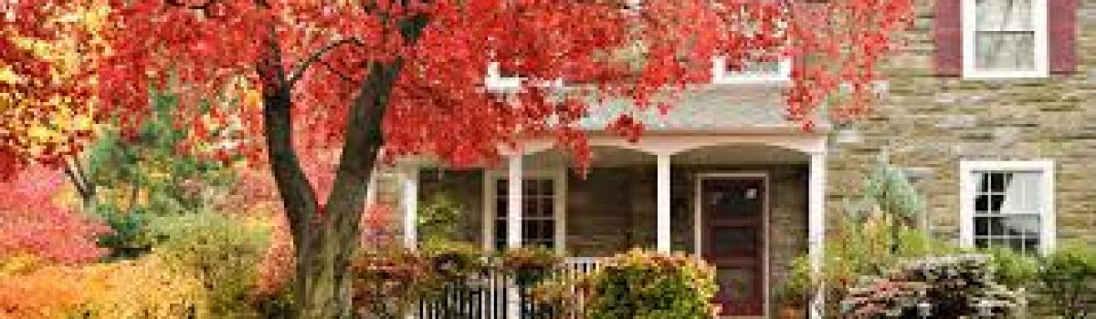 Tips to Sell in Autumn!