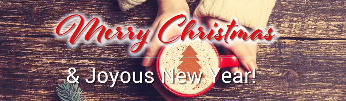 Merry Christmas and Joyous New Year!